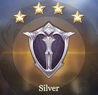 silver-aov